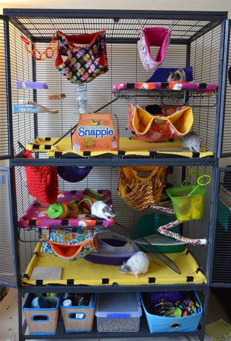 Colourfully decorated critter nation cage for rats | Rat