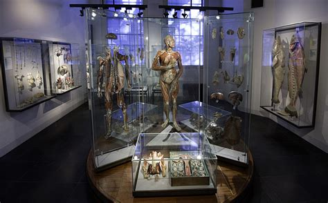 The World's 10 Most Fascinating Medical Museums