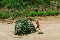 Oil chief – uncontacted tribes photos do not prove they