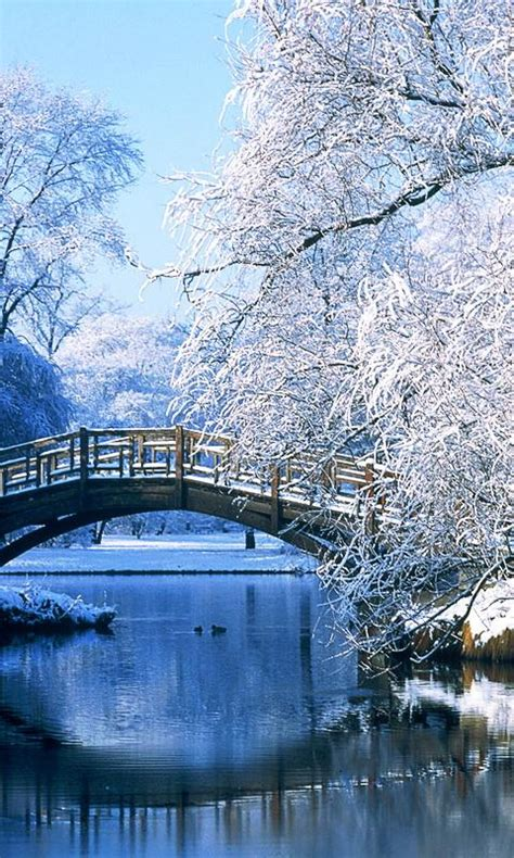 Free Winter Landscapes Wallpapers APK Download For Android
