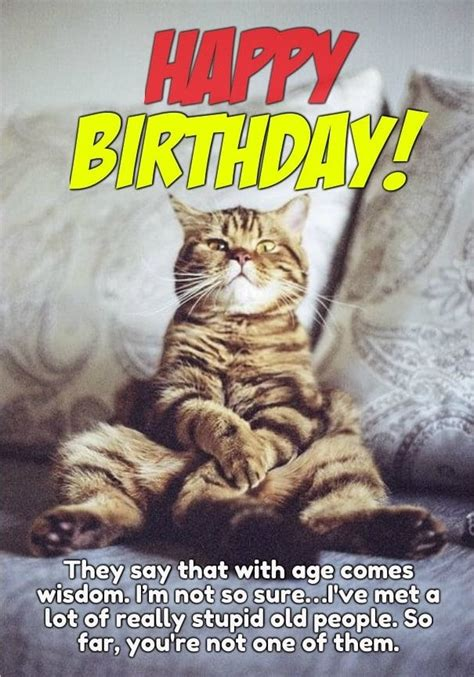 50 Happy Birthday Funny Pictures For Women