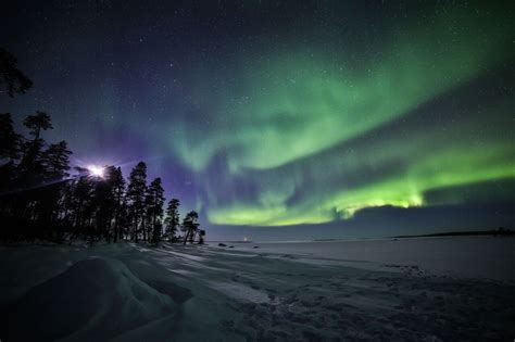 Adults Northern Lights Arctic Experience - Arctic Direct